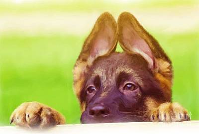 Digital Art - Dog Portrait by Alexander Del Rey