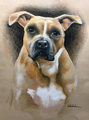 Drawing - Dog Portrait  by Robert Korhonen