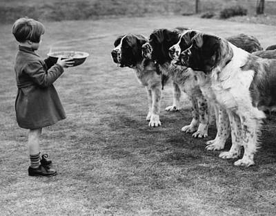 Child Photograph - Dogs Dinner by Hulton Collection