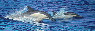 Dolphin Blue Original