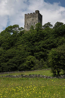 Photograph - Dolwyddelan Castle In Wales With Flowers by John McGraw
