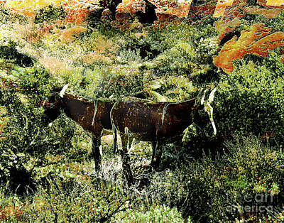 Mixed Media Royalty Free Images - Donkeys bathed in sunlight Royalty-Free Image by Bonnie Marie