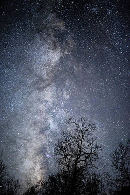 Photograph - The Milky Way Core by Cathy Neth