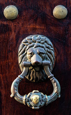 Photograph - Door Knocker by Tom Singleton