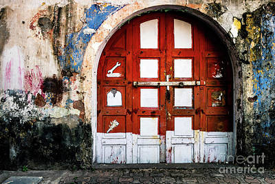 Doors Of India - Garage Door Art Print
