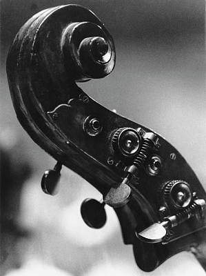 Photograph - Double Bass Scroll by Erich Auerbach