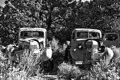 Photograph - Double Duty by Debra Herman