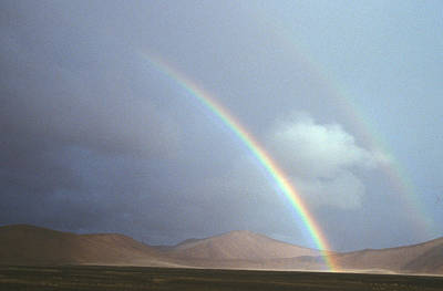 Photograph - Double Rainbow, Namibia by David Hosking