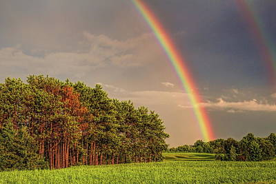 Photograph - Double Rainbow Over The Pines by Dale Kauzlaric