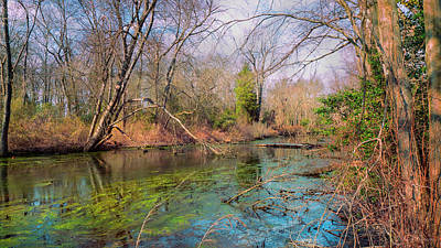 Photograph - Down By The River by John Rivera