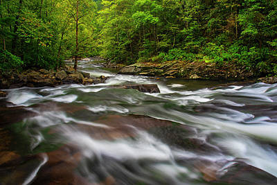 Photograph - Down The Tellico River by Andy Crawford
