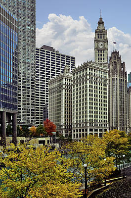 Photograph - Downtown Chicago - Trees And Buildings by Carlos Alkmin