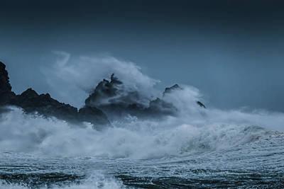 Photograph - Dragon 1 by Werner Kaffl