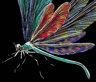 Drawing - Dragonfly Multi Wing by Joan Stratton