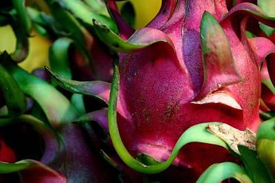 Photograph - Dragonfruit by Photo By Farley Baricuatro (www.colloidfarl.blogspot.com)