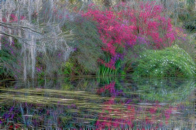 Photograph - Dream Reflection by Crystal Wightman