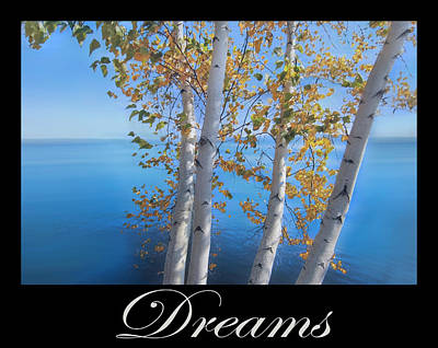 Photograph - Dreams Art Birch Trees On The Lake  by Debra and Dave Vanderlaan