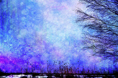 Photograph - Dreamy Blue by Randi Grace Nilsberg