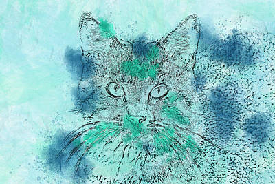 Photograph - Dreamy Cat by Isabella Biava