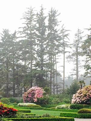Photograph - Dreamy Garden Near The Sea by Michael Oceanofwisdom Bidwell