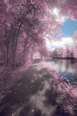 Photograph - Dreamy Walk by Brian Hale