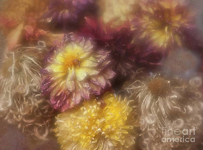 Photograph - Dried Dahlias And Chrysanthemums From My Garden. by Ann Jacobson