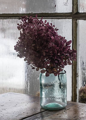 Photograph - Dried Hydrangea In A Jar by Betty Denise