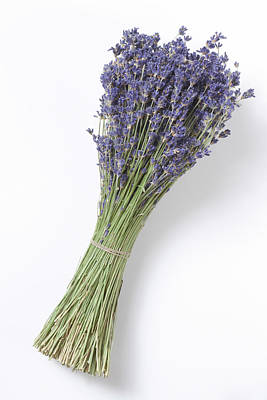 Dried Lavender Bunch, Elevated View Art Print by Westend61