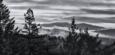 Photograph - Drifting Fog by Kathleen Bishop