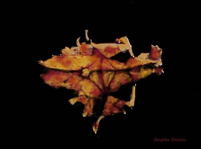 Photograph - Drifting Into Autumn by Angela Davies