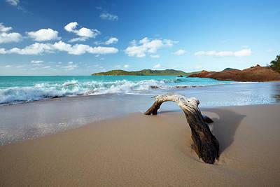 Antilles Photograph - Driftwood On Caribbean Beach by Michaelutech