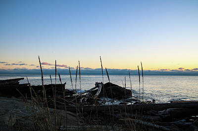 Photograph - Driftwood Sunset by Perggals - Stacey Turner