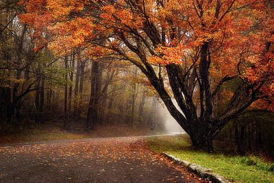 Photograph - Drive Into the Autumn by Vladimir Grablev