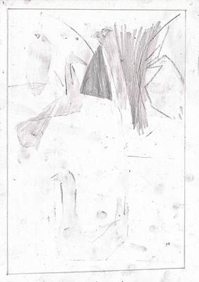 Drawing - Duck Pond 6b by Artist Dot