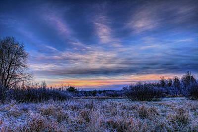 Photograph - Duck Pond Dawn by Dale Kauzlaric