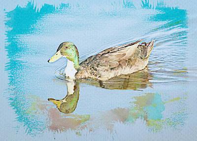 Digital Art - Duck Watercolor by Alison Frank