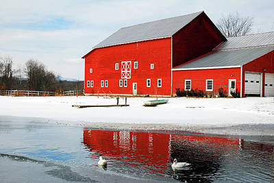Advertising Archives - Ducks on a rural frozen pond by James Kirkikis