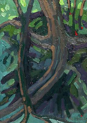 Painting - Dumoine Rocky Roots by Phil Chadwick