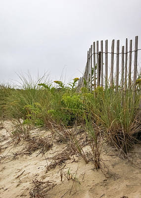 Achieving - Dune Fence #2 by Alesia Kaye Stein