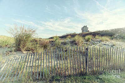 Photograph - Dune Fence And Grass by Debra Fedchin