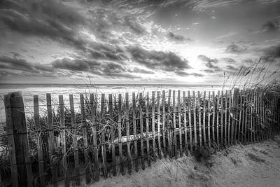 Photograph - Dune Fences At The Sea Black And White by Debra and Dave Vanderlaan