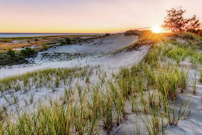 Photograph - Dune Grass Sunrise, Crane Beach by Michael Hubley
