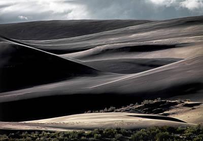 Photograph - Dune Texture by Leland D Howard