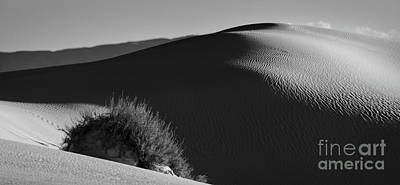 Photograph - Dunes Of White Sands by Doug Sturgess