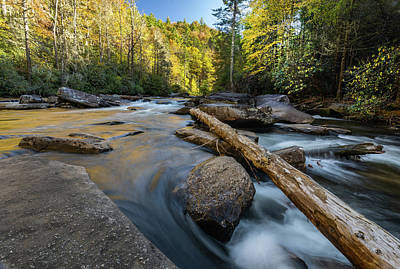 Photograph - Dupont State Forest Lower Falls by Donnie Whitaker