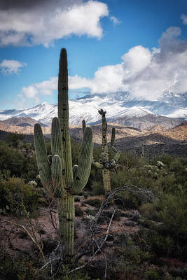 Photograph - Dusting The Desert Southwest In Snow by Saija Lehtonen