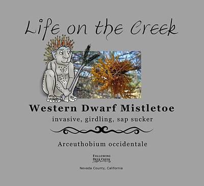 Digital Art - Dwarf Mistletoe by Lisa Redfern