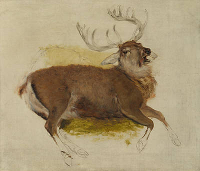 Painting - Dying Stag by Edwin Landseer