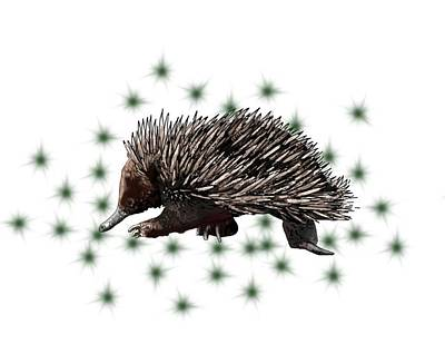 Child Wall Art - Digital Art - E Is For Echidna by Joan Stratton