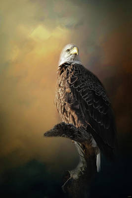 Photograph - Eagle On The Levy by Jai Johnson